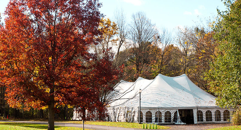 Get a complete guidance on party tents or sheds